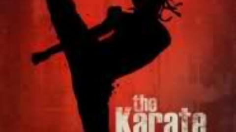 Karate kid 2010