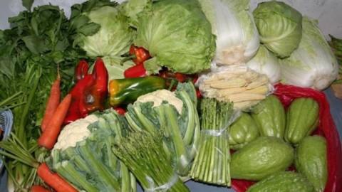 Alimente cu proprietati antioxidante
