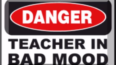 Profesorii de necopiat