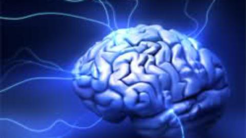 Creierul uman cel mai rapid
