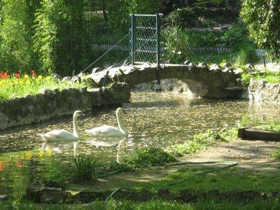 Locuri frumoase de iesit pentru studentii din Bucuresti: Parcul Cismigiu