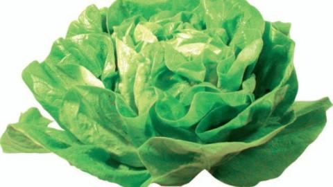 Reteta de primavara – ciorba de salata verde
