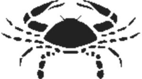 Horoscop pe luna iulie pentru cei nascuti in zodia Rac
