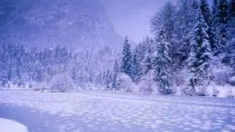 5 filme potrivite pentru serile reci de iarna