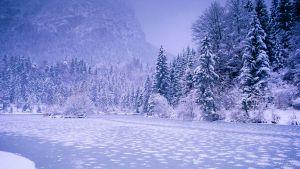 Cum sa faci fotografii de iarna senzationale - sfaturi pentru poze mai frumoase