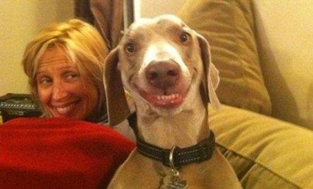 Cine zambeste mai frumos?