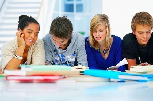 Practicor - proiectul prin care studentii pot efectua stagii de practica la firme din Romania