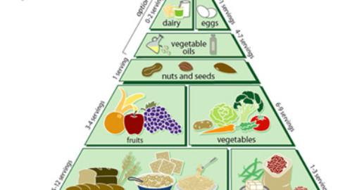 Regimul vegan sau carnivor? Tu ce ai alege?? Cine are dreptate?