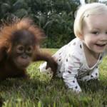 Copilul si animalele care cresc impreuna