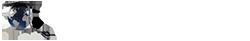 Student pe net – Portal de socializare studentesc